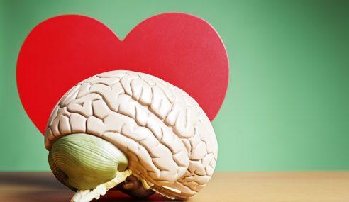 Reacciones químicas que se dan en el cerebro cuando alguien se enamora.